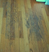 Prevent Damage to Hardwood Floors:  Shame  On Consumer Reports