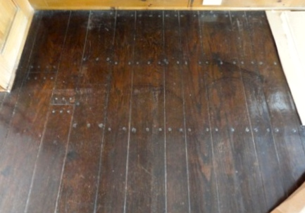 Dog nails on hardwood floors carpet review for Hardwood floors dog nails